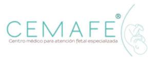 cemafe-participantes-training-talks-premium-systems-en-mexico