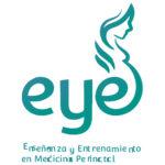grupo-eye-participantes-training-talks-premium-systems-en-mexico